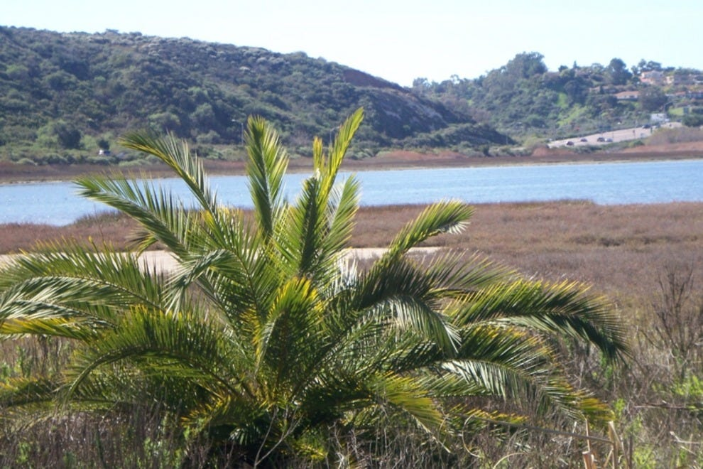 Batiquitos Lagoon