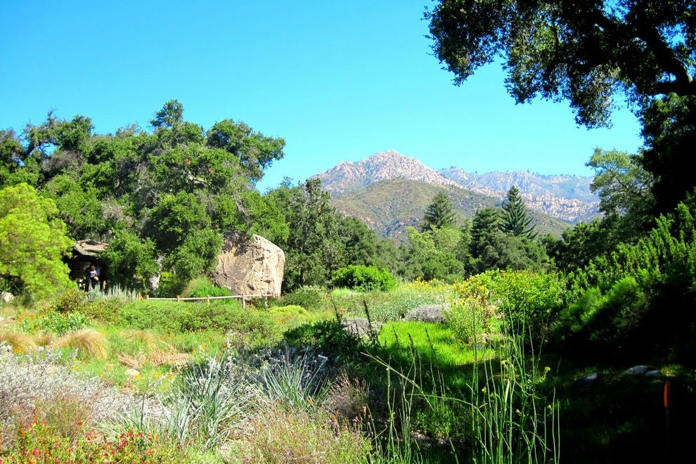 Santa Barbara Botanic Garden Santa Barbara Attractions Review 10best Experts And Tourist Reviews