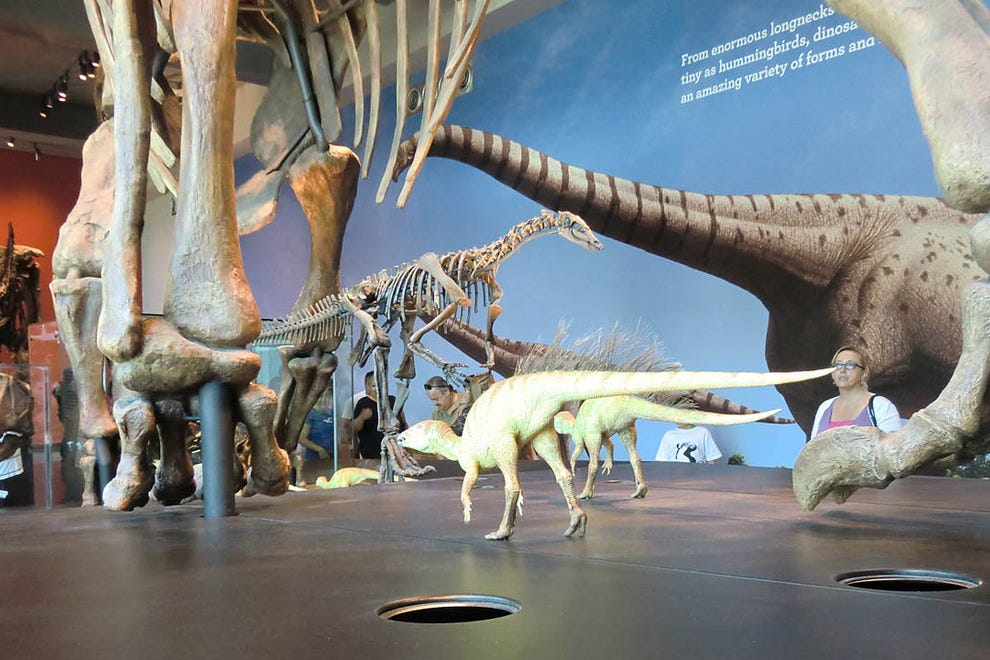 Cincinnati museums 10best museum reviews Dinosaur museum ohio
