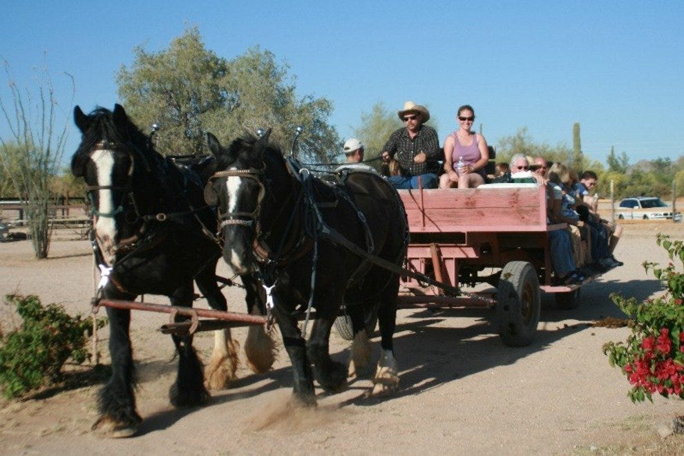 Take a hayride with the family at MacDonald's Ranch in North Scottsdale.