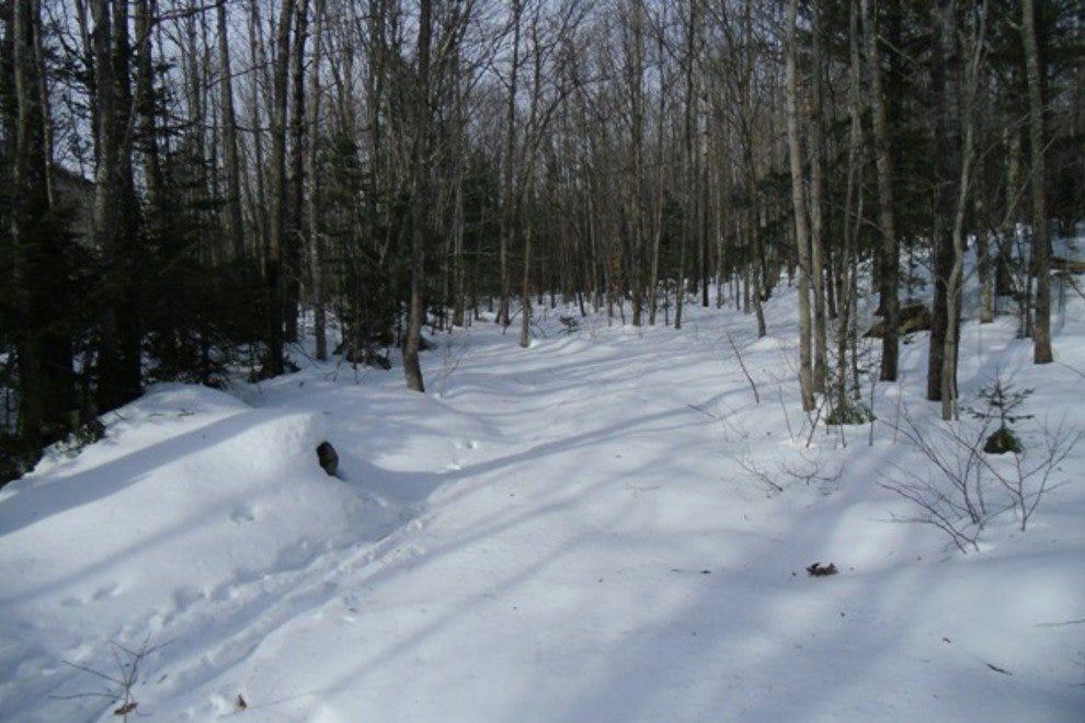 缅因州冬季运动中心