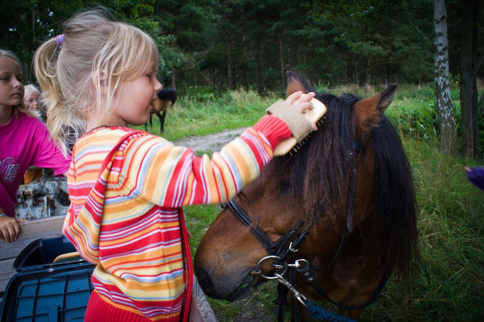 Little girls often love horses