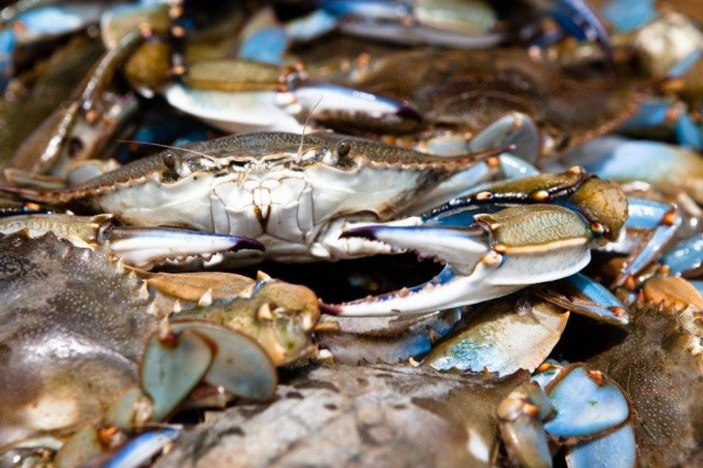 Charleston Crab House - James Island