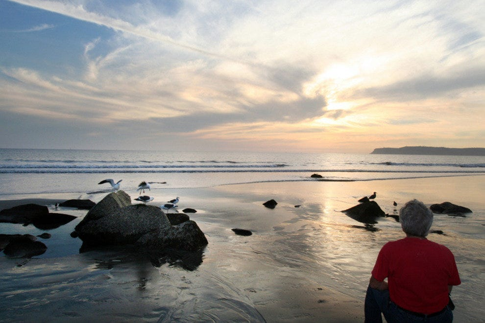 Connect with Nature on Coronado's World-Famous Beach