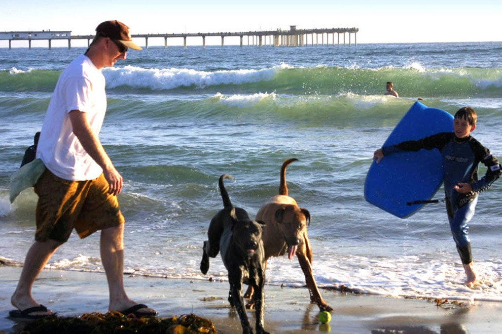 San Diego Beaches, Dog Beach--Ocean Beah