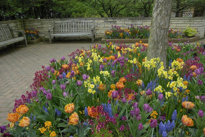 Chicago Botanic Garden: Chicago Attractions Review - 10Best Experts ...