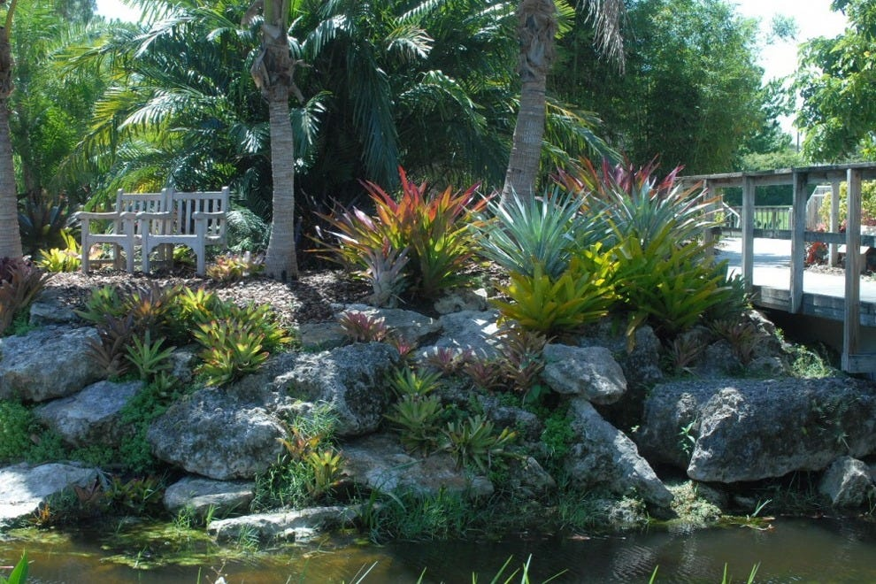 Mounts Botanical Garden Palm Beach West Palm Beach Attractions Review 10best Experts And