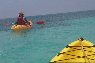 10 Best Things to Do on the Water When Vacationing in Key West