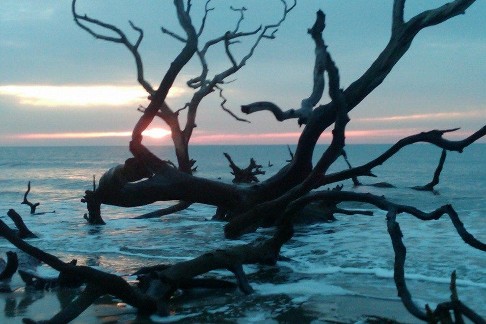 Sunrise on Bull Island's Boneyard Beach