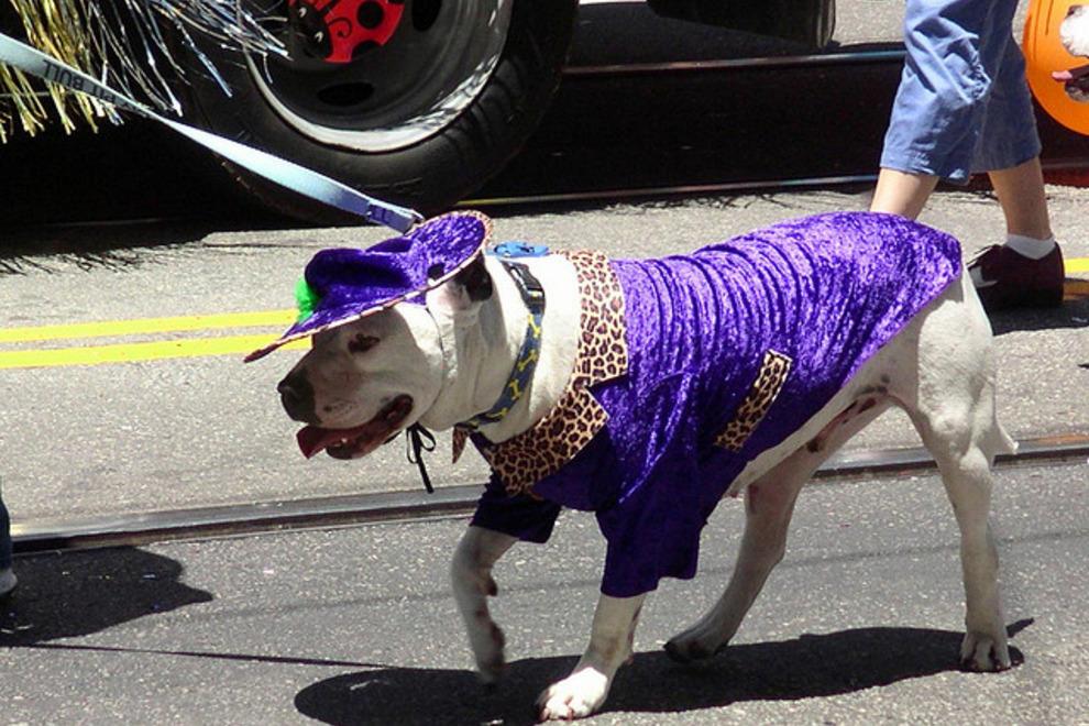 Annual Pride Parade in San Francisco
