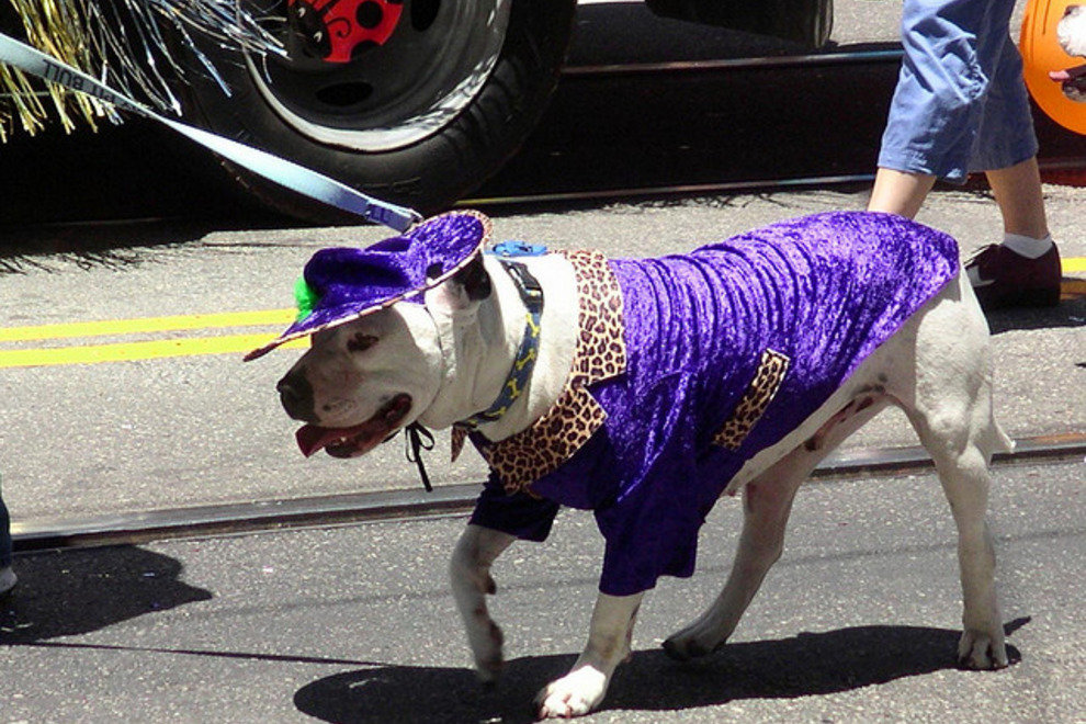 Annual Pride Parade in San Francisco