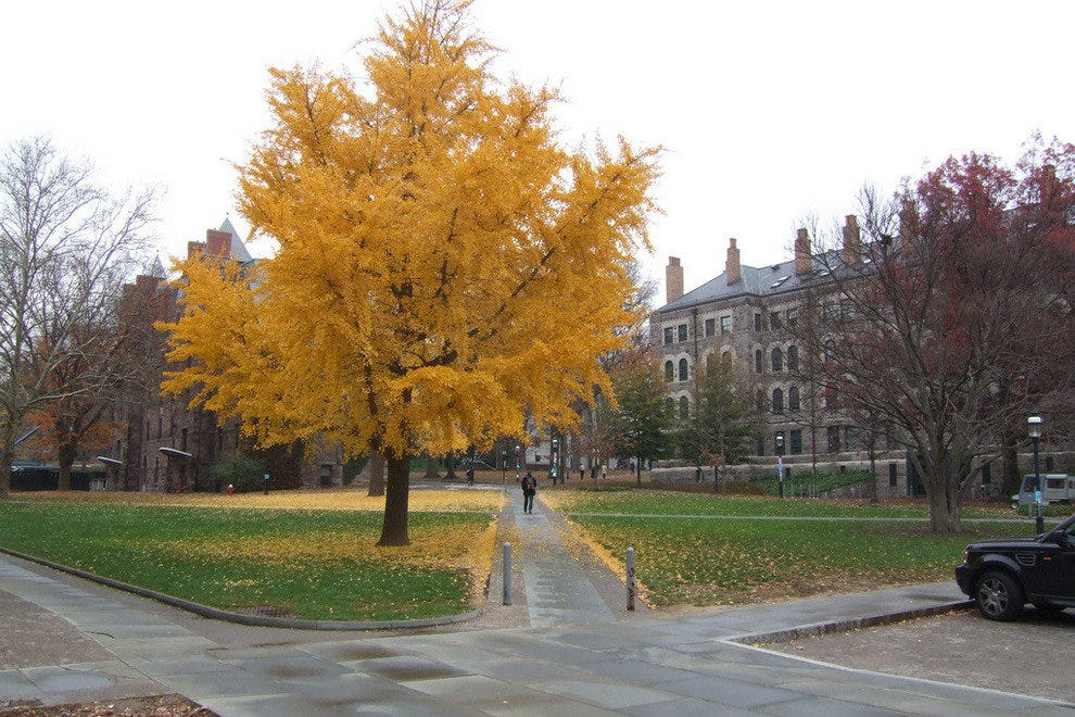 Princeton in autumn