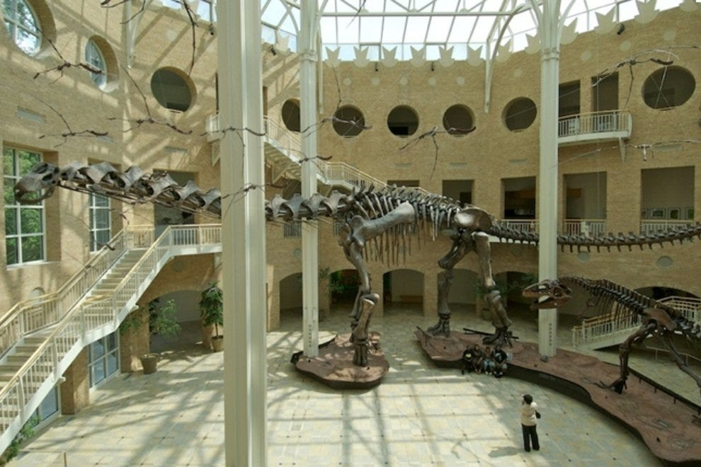 Fernbank Museum: Fun for Kids of All Ages