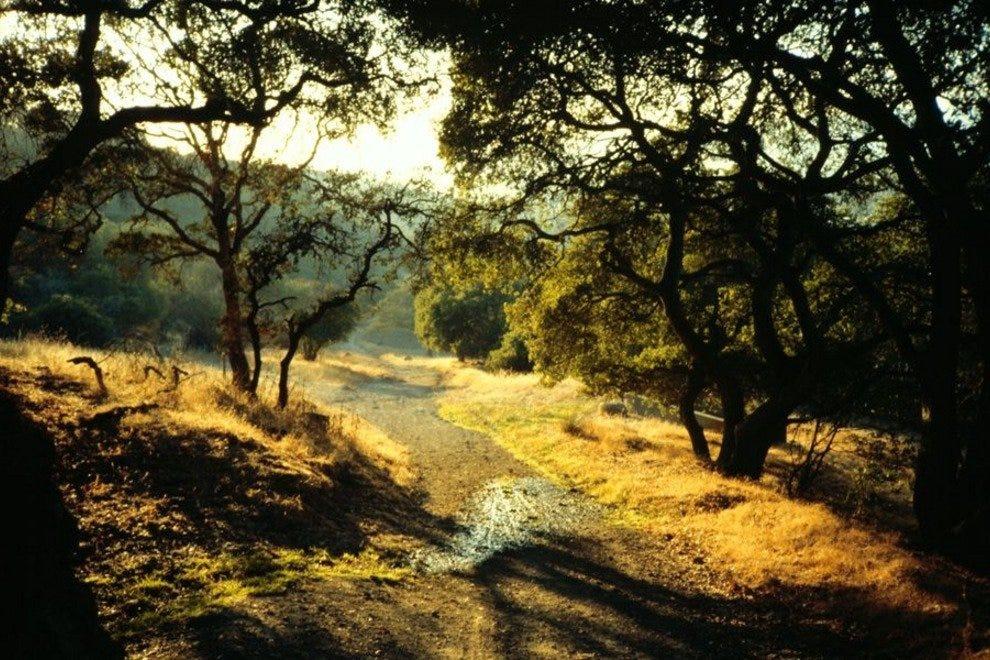 地平线荒野公园