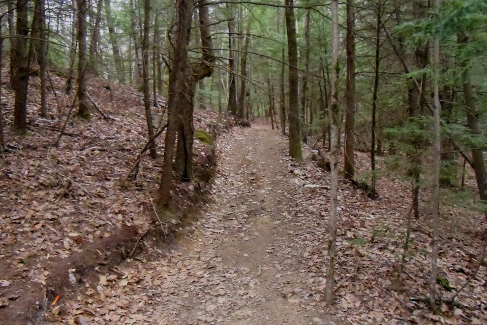 Mt agamenticus mountain biking portland attractions for Portland maine bike trails