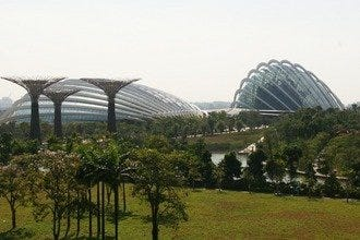 Gardens By the Bay Offer Tranquil Getaway in Downtown Singapore