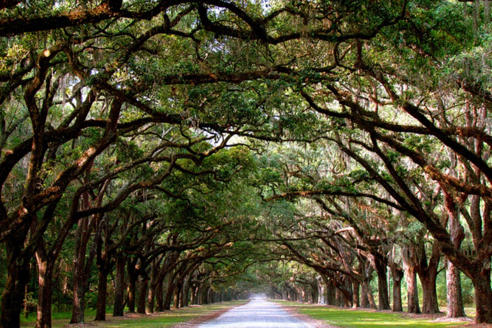 Things To Do In Sandfly Isle Of Hope Savannah Ga Travel Guide By 10best