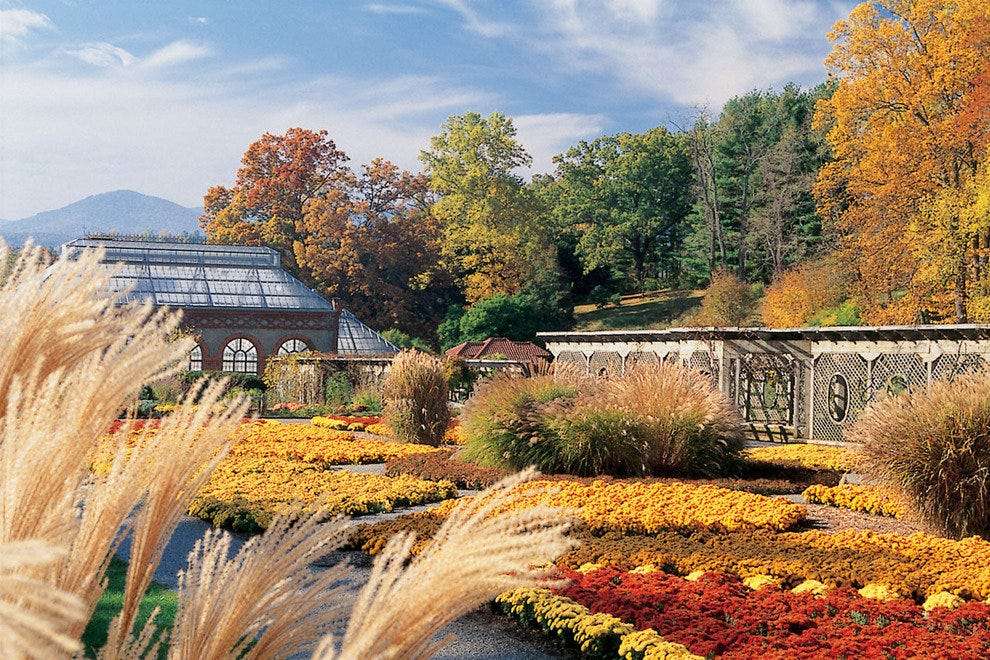 Fall at The Biltmore Estate in Asheville