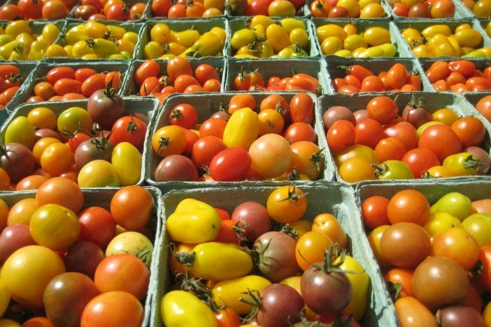 Lush local tomatoes