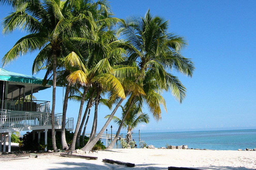 A picturesque sandy beach in Islamorada