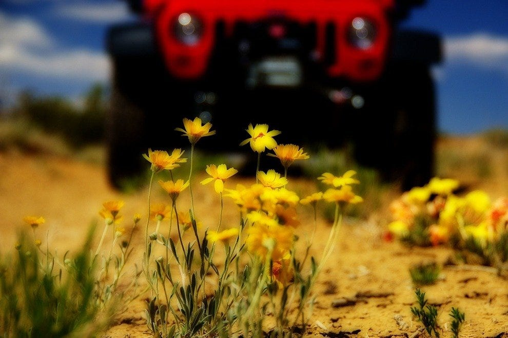 New Mexico Red Jeep tours
