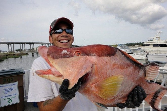 Savannah Fishing Charters 10best Attractions Reviews