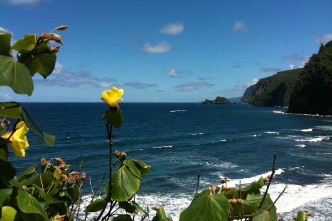 Tours and Excursions in Big Island