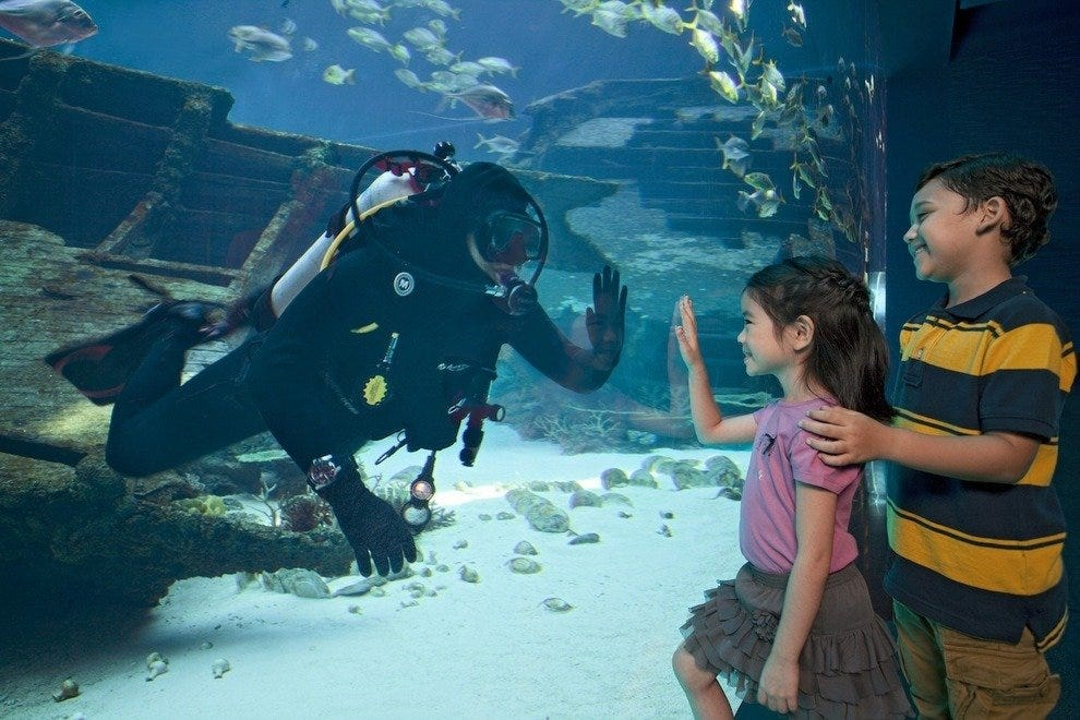 Marine Life Park is home to the world's largest aquarium