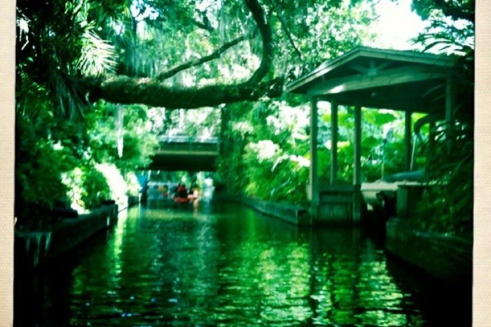 Peace Of Mind Kayak Tours Winter Park Fl