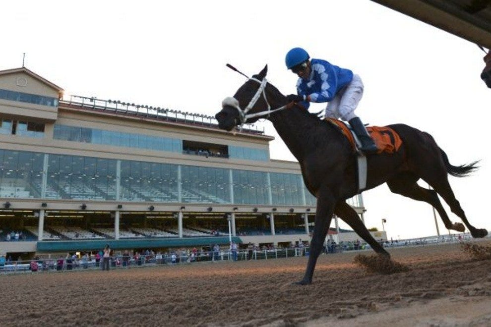 Retama Park Horse Racing San Antonio Attractions Review