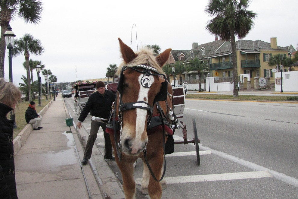 Horse-drawn carriage in St Augustine