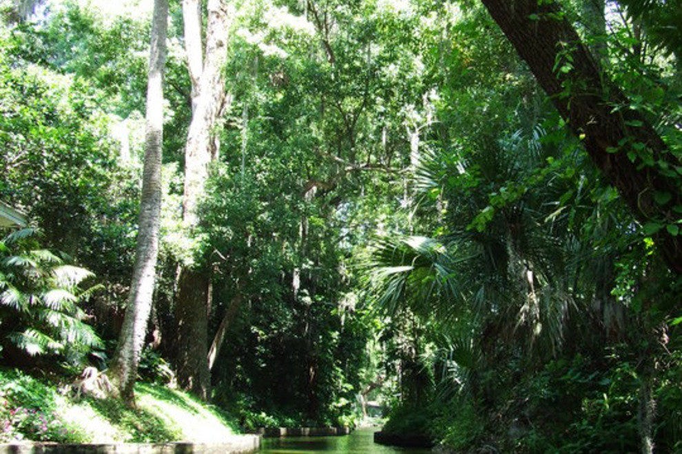 Venetian Canal is among the Winter Park waterways you'll navigate with Peace of Mind Kayak Tours