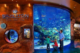 The Aquarium inside the Silverton