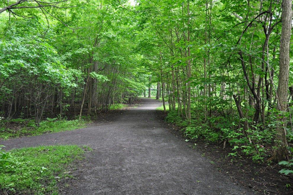 Angrignon公园