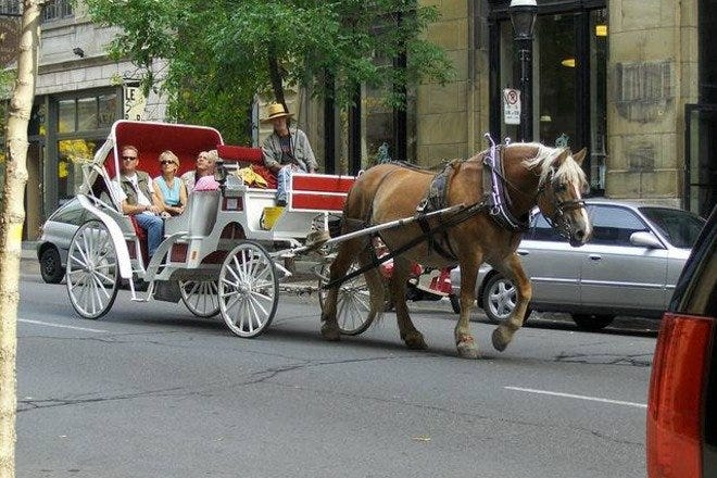 Hatcreek Carriage Tours