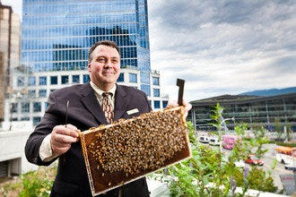 10Best Visits Rooftop Honeybees at Fairmont Hotels