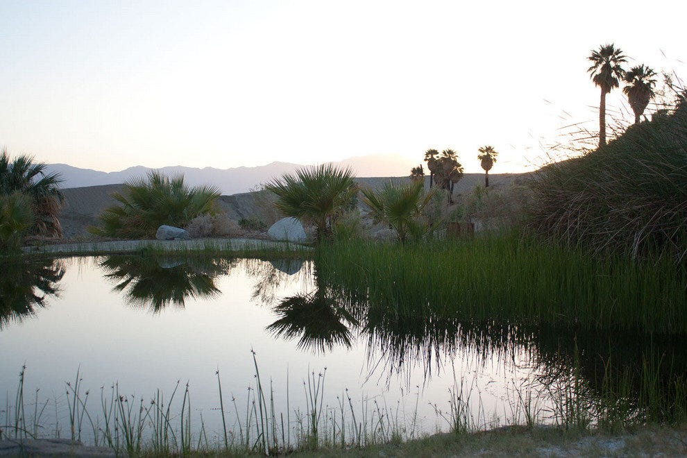A natural pond at the San Andreas fault line