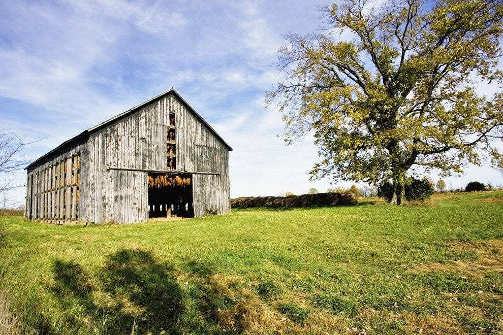 Georgetown Farm tobacco barn
