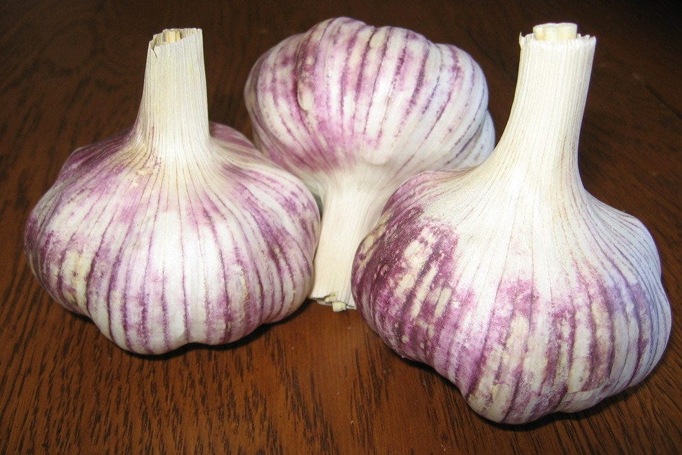 Cerroni's Purple Garlic