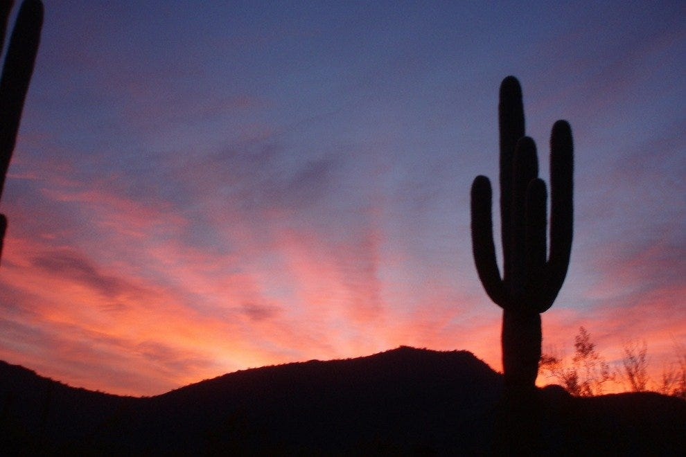 Organ Pipe Cactus National Monument at sunset