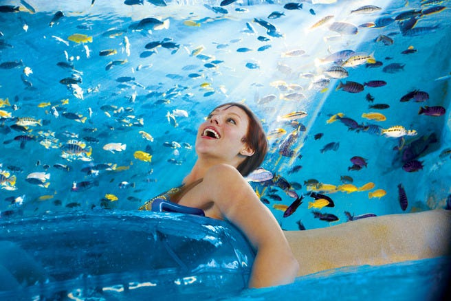 Summer Fun 10 U S Water Parks To Visit With Your Kids