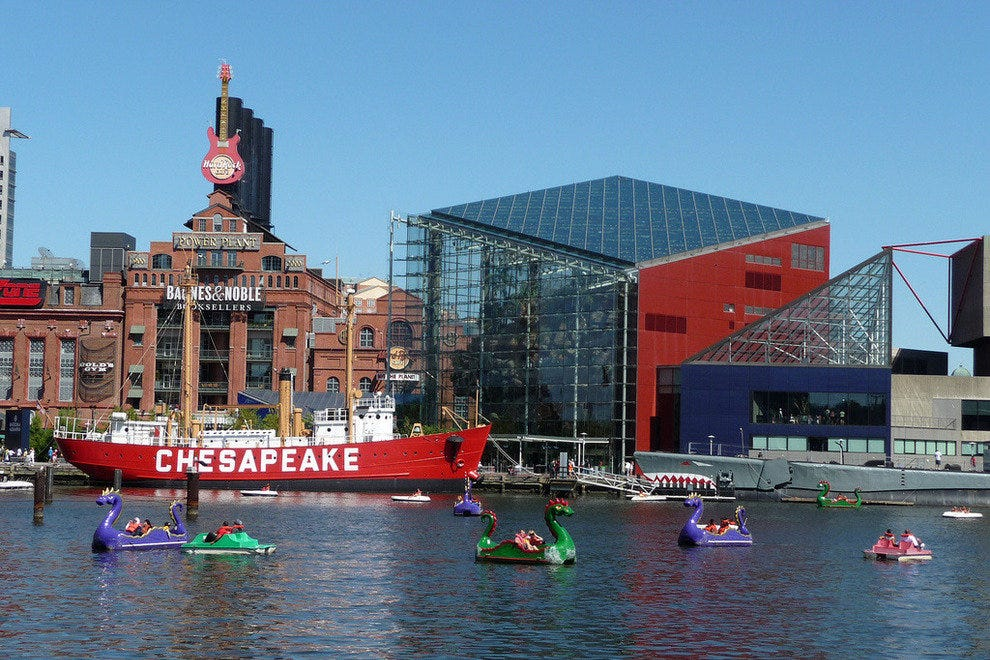 Paddleboats fill the Inner Harbor on a summer afternoon