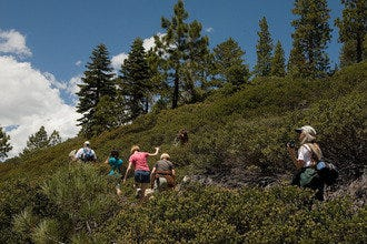 Hiking and Carbs in Lake Tahoe for Hiking Enthusiasts