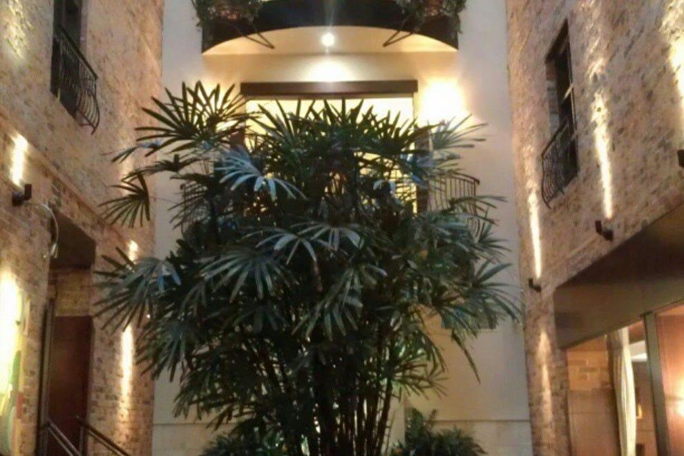 酒店Nelligan