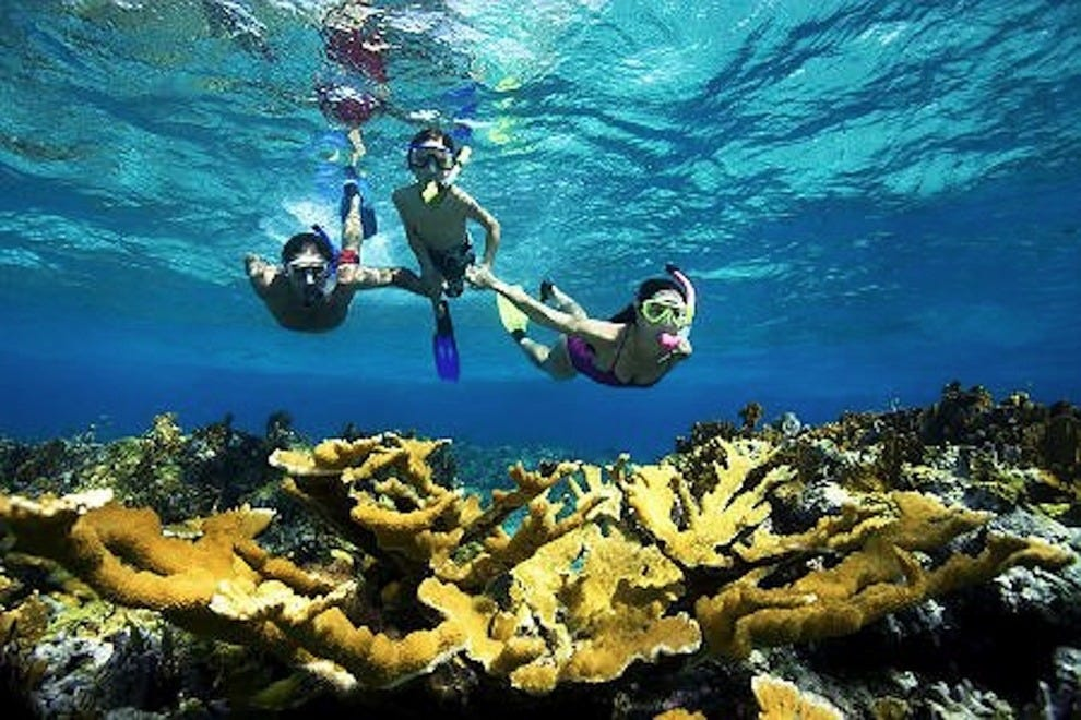 Private Snorkeling Aruba Aruba Attractions Review 10best Experts And Tourist Reviews