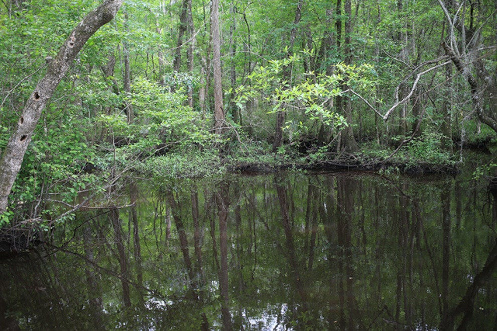 Ogeechee Canal and Museum