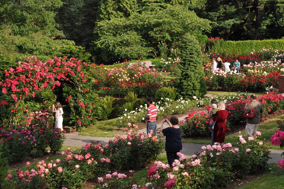 International Rose Test Gardens