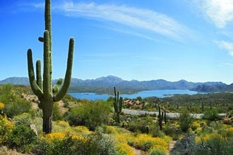 10 Best Attractions and Activities in Scottsdale