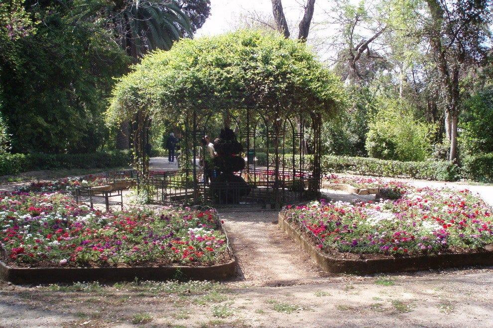 Национальный сад Афин  Семейное развлечение в Афинах p P1010757 54 990x660 201404241313