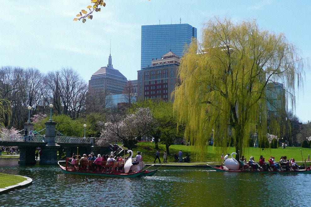Boats in Boston Public Garden